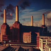 Pink Floyd | Animals (Remastered)